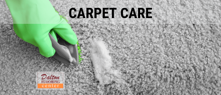 dalton-carpet-care